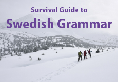 Swedish grammar